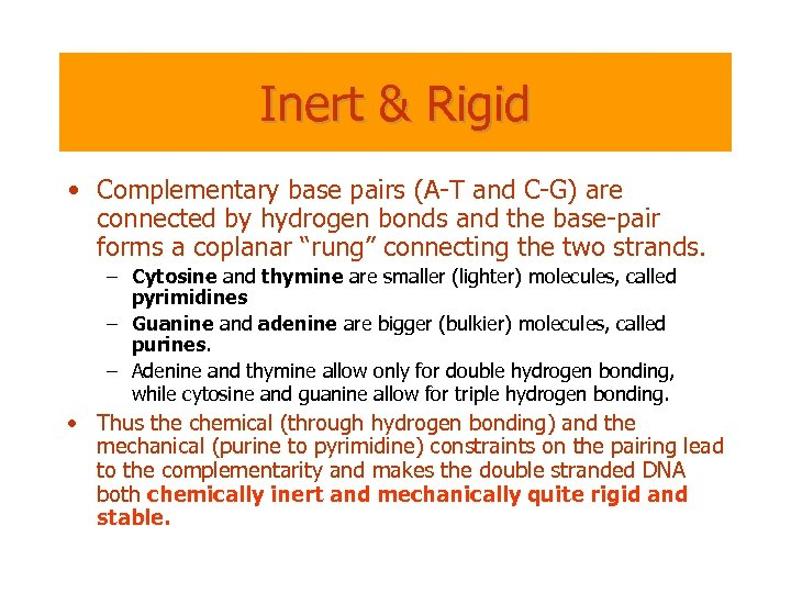Inert & Rigid • Complementary base pairs (A-T and C-G) are connected by hydrogen
