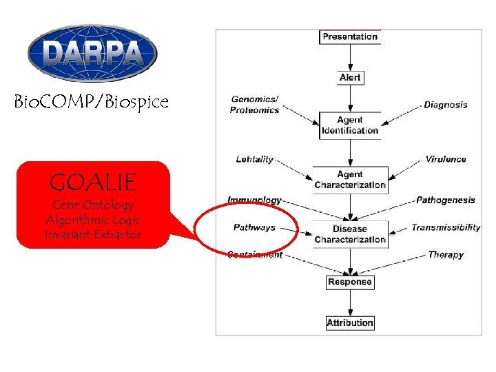 Bio. COMP/Biospice GOALIE Gene Ontology Algorithmic Logic Invariant Extractor