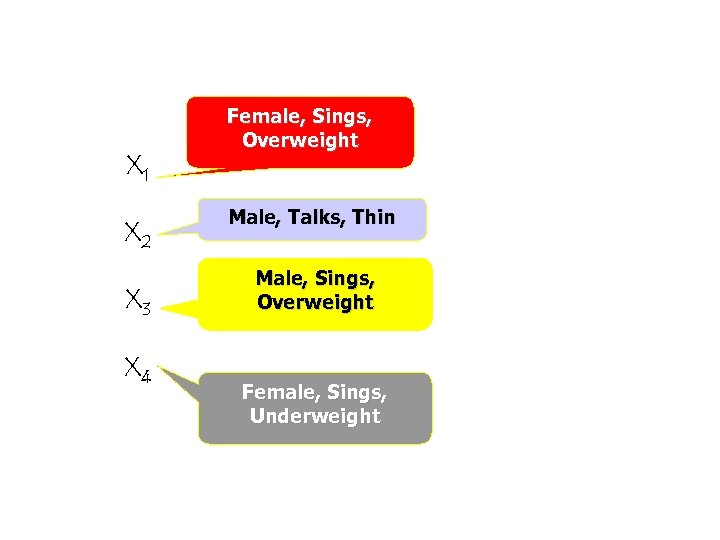 X 1 X 2 X 3 X 4 Female, Sings, Overweight Male, Talks, Thin