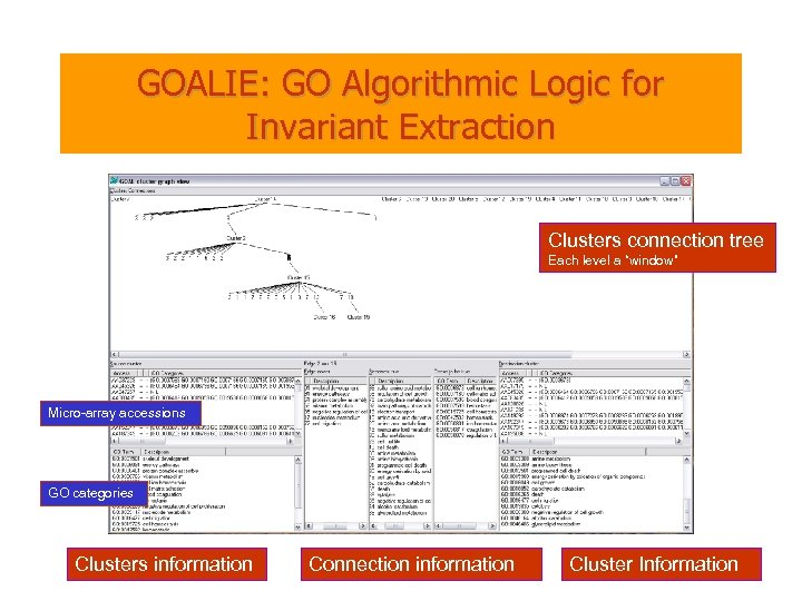 """GOALIE: GO Algorithmic Logic for Invariant Extraction Clusters connection tree Each level a """"window"""""""