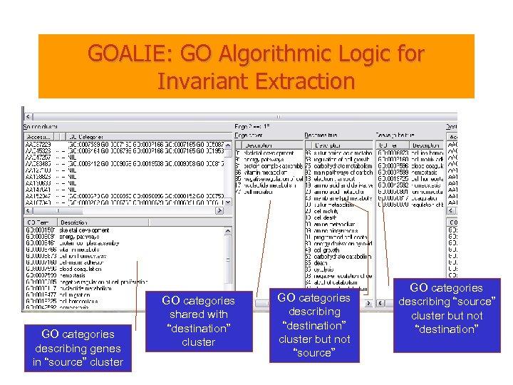 "GOALIE: GO Algorithmic Logic for Invariant Extraction GO categories describing genes in ""source"" cluster"