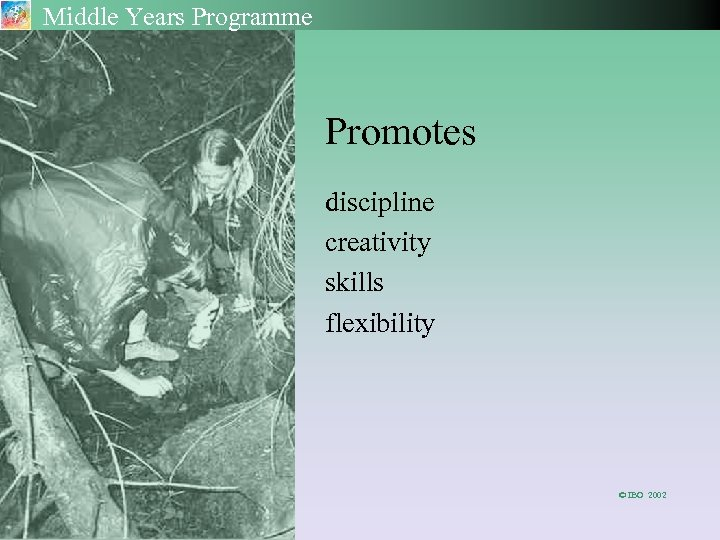 Middle Years Programme Promotes discipline creativity skills flexibility © IBO 2002