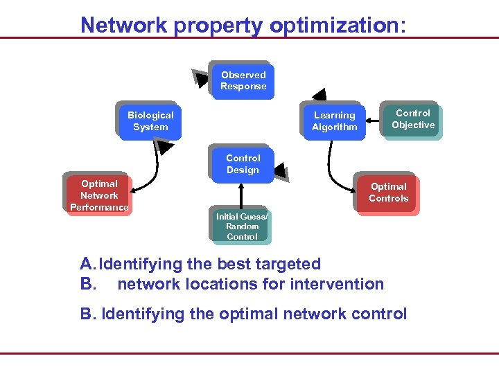 Network property optimization: Observed Response Biological System Control Objective Learning Algorithm Control Design Optimal