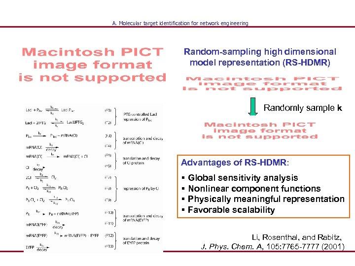 A. Molecular target identification for network engineering Random-sampling high dimensional model representation (RS-HDMR) Randomly