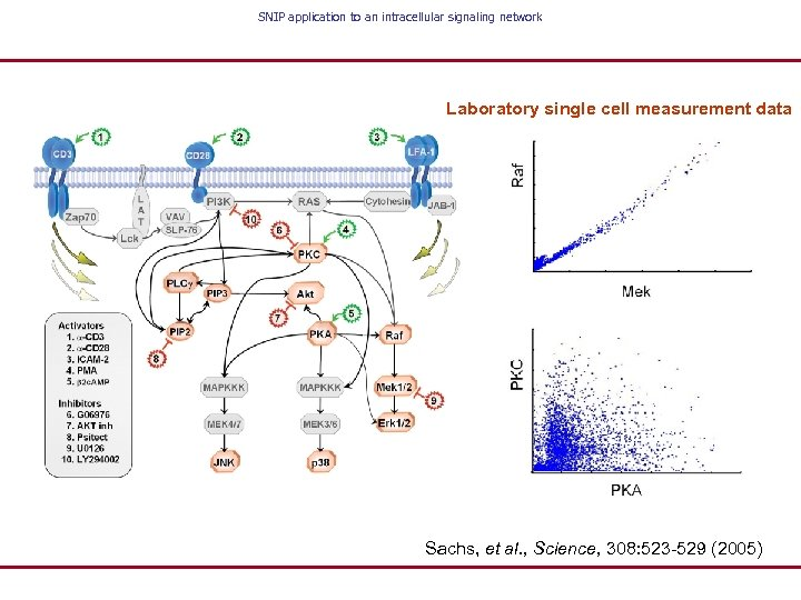 SNIP application to an intracellular signaling network Laboratory single cell measurement data Sachs, et