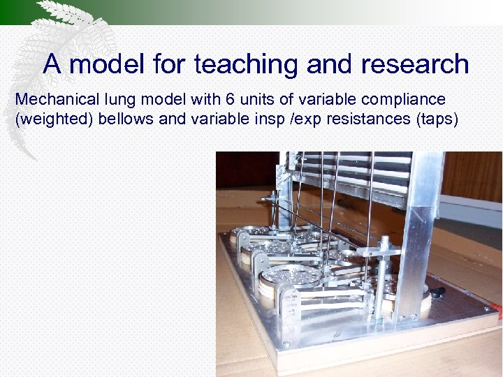 A model for teaching and research Mechanical lung model with 6 units of variable