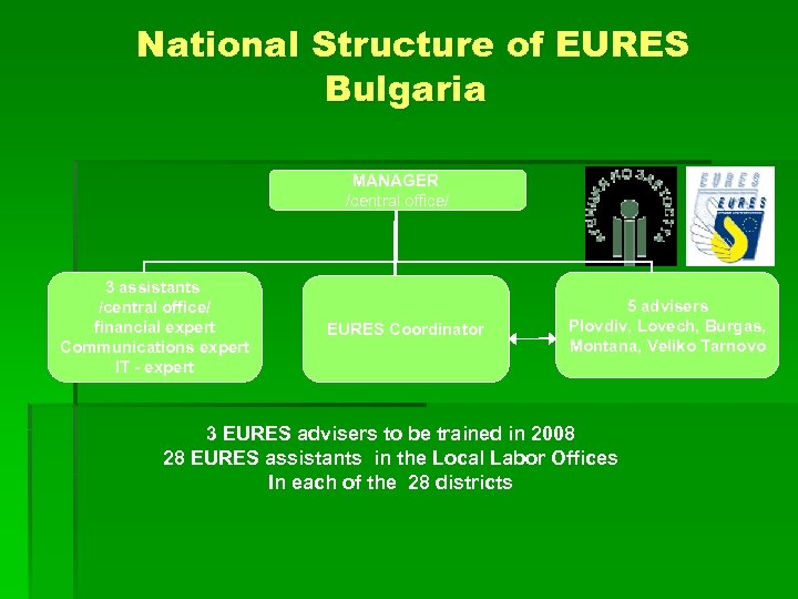 National Structure of EURES Bulgaria MANAGER /central office/ 3 assistants /central office/ financial expert