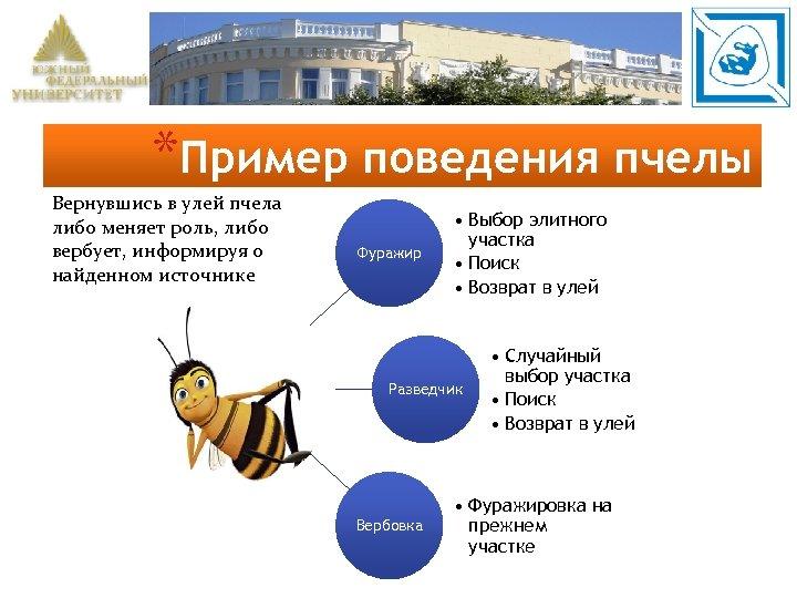 *Пример поведения пчелы Вернувшись в улей пчела либо меняет роль, либо вербует, информируя о