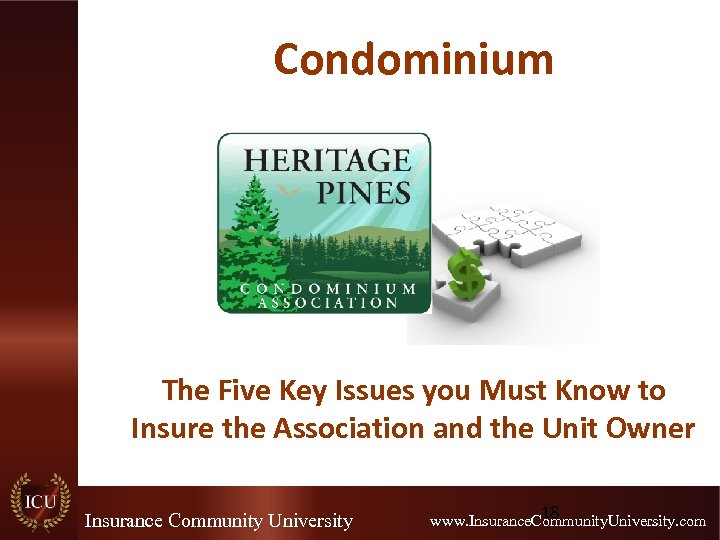 Condominium The Five Key Issues you Must Know to Insure the Association and the