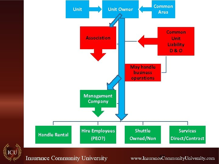 Unit Owner Common Area Common Unit Liability D&O Association May handle business operations Management