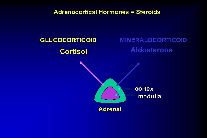 Adrenocortical Hormones = Steroids GLUCOCORTICOID MINERALOCORTICOID Aldosterone Cortisol cortex medulla Adrenal