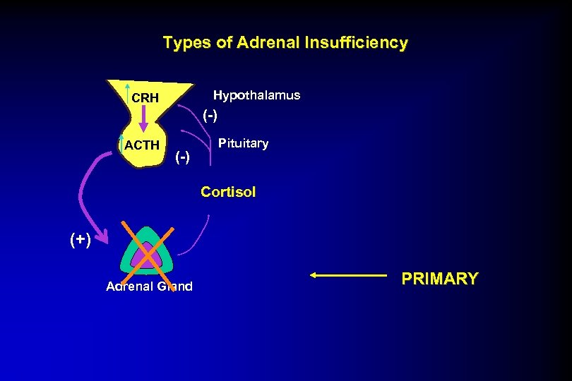 Types of Adrenal Insufficiency Hypothalamus CRH (-) ACTH (-) Pituitary Cortisol (+) Adrenal Gland