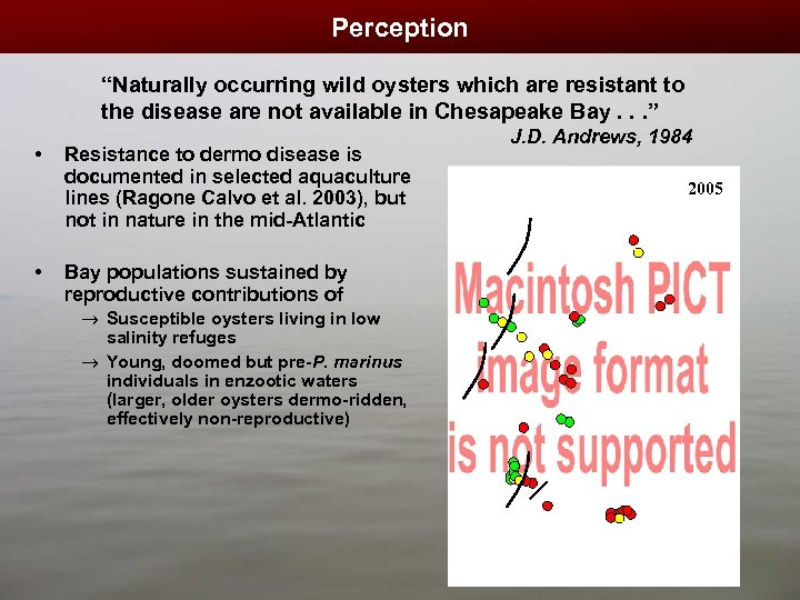 "Perception ""Naturally occurring wild oysters which are resistant to the disease are not available"