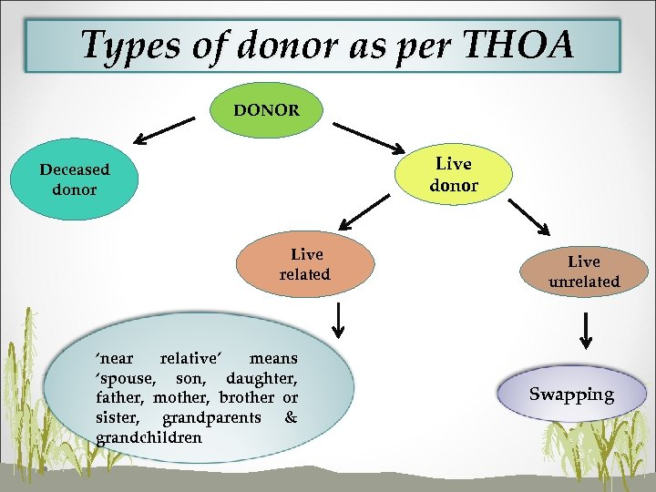 Types of donor as per THOA DONOR Live donor Deceased donor Live related 'near