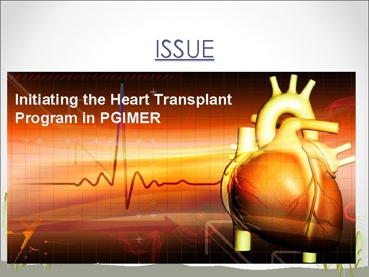 ISSUE Initiating the Heart Transplant Program in PGIMER