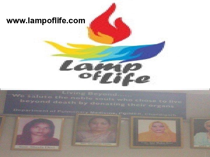 www. lampoflife. com