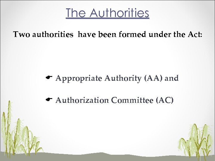 The Authorities Two authorities have been formed under the Act: E Appropriate Authority (AA)