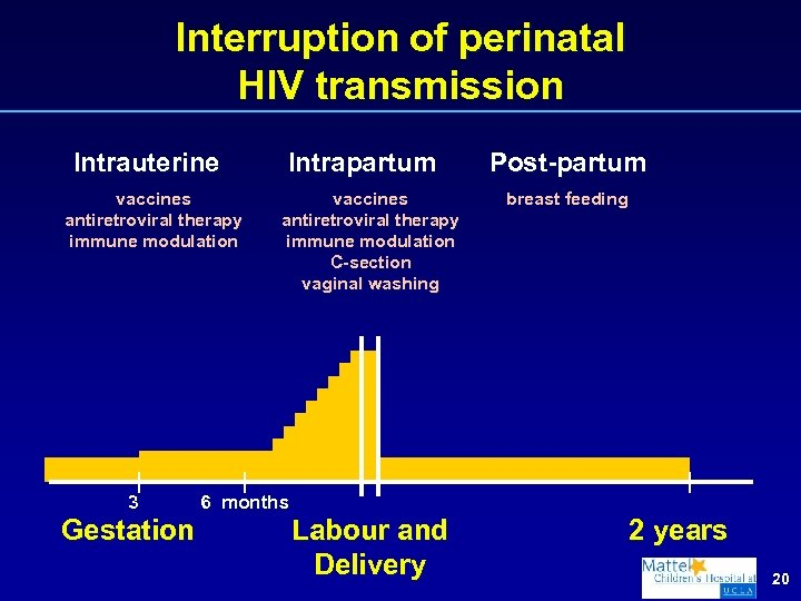 Interruption of perinatal HIV transmission Intrauterine vaccines antiretroviral therapy immune modulation 3 Gestation Intrapartum