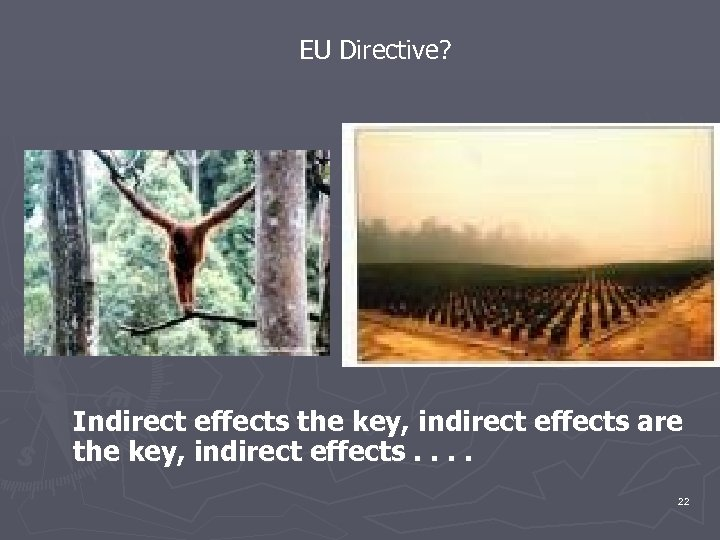 EU Directive? Indirect effects the key, indirect effects are the key, indirect effects. .