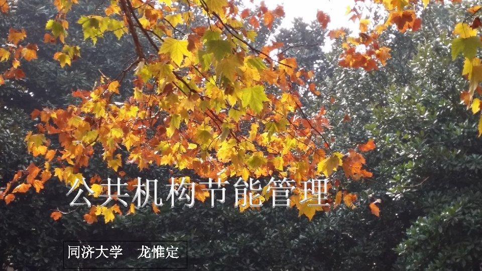 同济大学 龙惟定