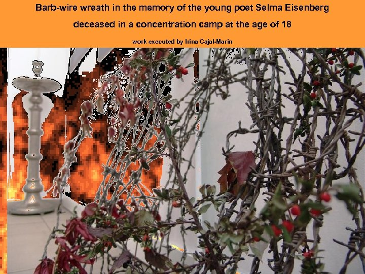 Barb-wire wreath in the memory of the young poet Selma Eisenberg deceased in a