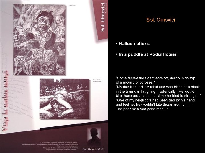 """Sol. Omovici • Hallucinations • In a puddle at Podul Iloaiei """"Some ripped their"""
