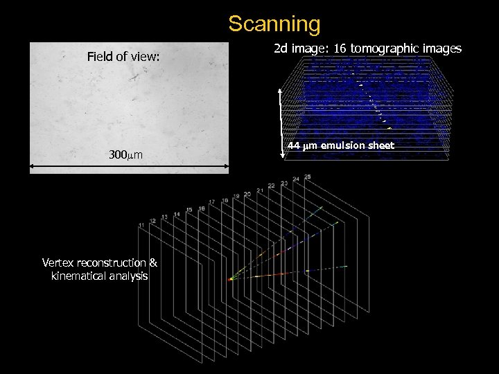 Scanning Field of view: 300 m Vertex reconstruction & kinematical analysis 2 d image: