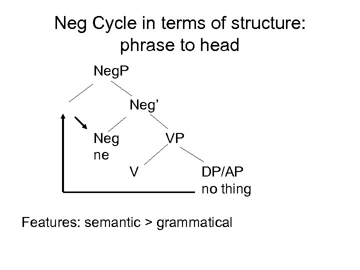 Neg Cycle in terms of structure: phrase to head Neg. P Neg' Neg ne