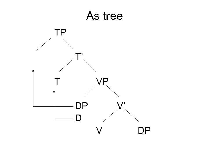 As tree TP T' T VP DP D V' V DP