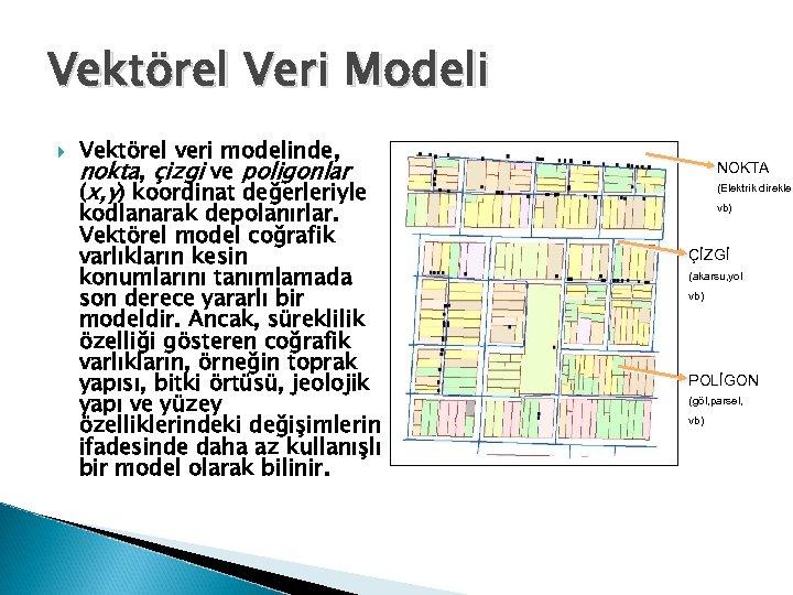 Vektörel Veri Modeli Vektörel veri modelinde, nokta, çizgi ve poligonlar (x, y) koordinat değerleriyle