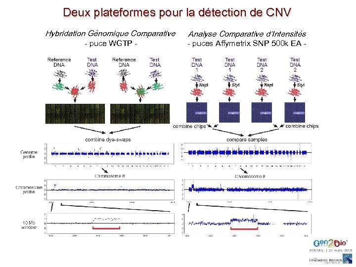 Deux plateformes pour la détection de CNV Hybridation Génomique Comparative - puce WGTP -