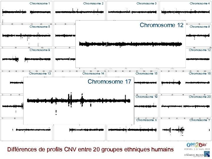 Chromosome 1 Chromosome 2 Chromosome 3 Chromosome 5 Chromosome 6 Chromosome 7 Chromosome 8