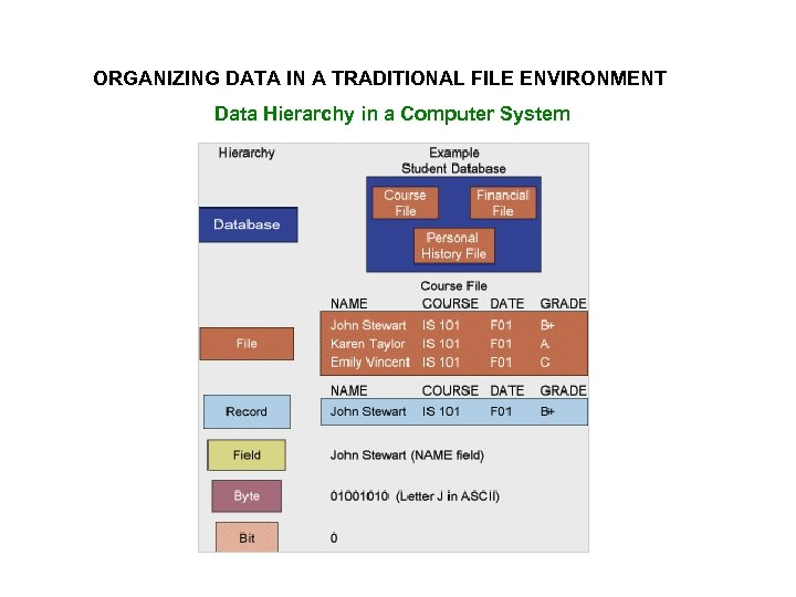 ORGANIZING DATA IN A TRADITIONAL FILE ENVIRONMENT Data Hierarchy in a Computer System