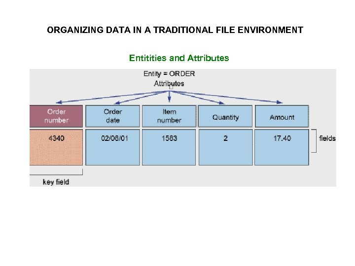 ORGANIZING DATA IN A TRADITIONAL FILE ENVIRONMENT Entitities and Attributes