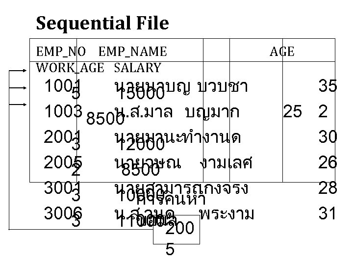 Sequential File EMP_NO EMP_NAME WORK_AGE SALARY 1001 นายนาบญ บวบชา 5 15000 1003 8500 น.