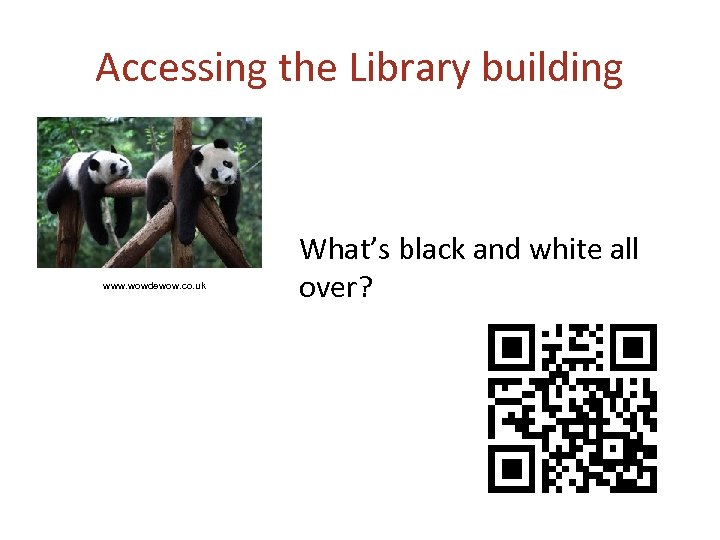 Accessing the Library building www. wowdewow. co. uk What's black and white all over?