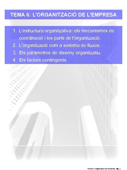 TEMA 6: L'ORGANITZACIÓ DE L'EMPRESA 1. L'estructura organitzativa: els mecanismes de coordinació i les