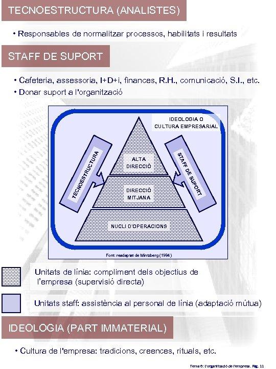TECNOESTRUCTURA (ANALISTES) • Responsables de normalitzar processos, habilitats i resultats STAFF DE SUPORT •