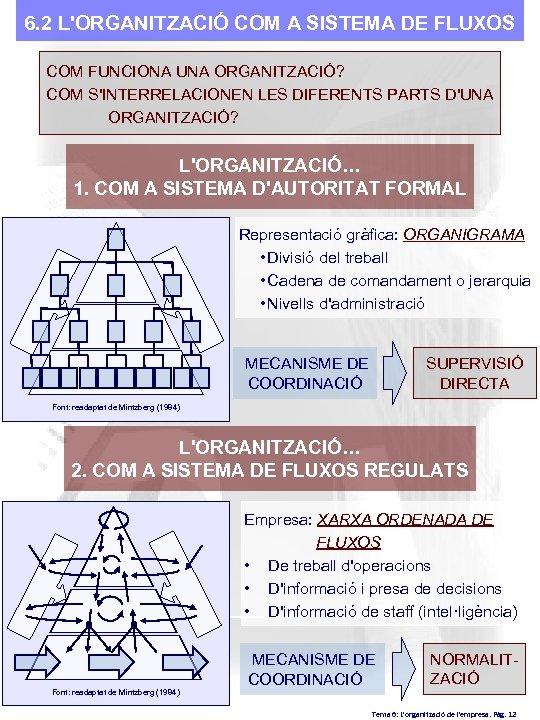 6. 2 L'ORGANITZACIÓ COM A SISTEMA DE FLUXOS COM FUNCIONA UNA ORGANITZACIÓ? COM S'INTERRELACIONEN