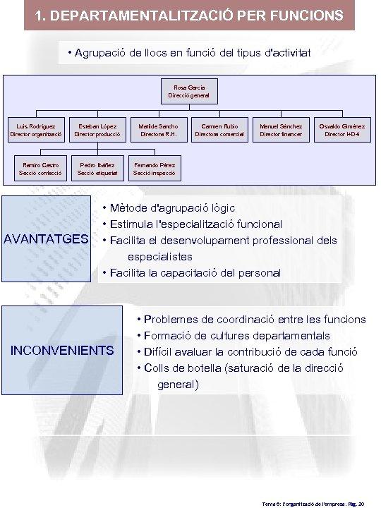 1. DEPARTAMENTALITZACIÓ PER FUNCIONS • Agrupació de llocs en funció del tipus d'activitat Rosa