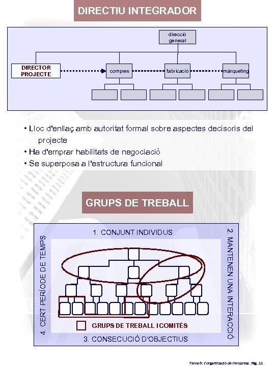 DIRECTIU INTEGRADOR direcció general DIRECTOR PROJECTE compres fabricació màrqueting • Lloc d'enllaç amb autoritat