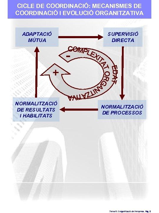 CICLE DE COORDINACIÓ: MECANISMES DE COORDINACIÓ I EVOLUCIÓ ORGANITZATIVA ADAPTACIÓ MÚTUA SUPERVISIÓ DIRECTA +