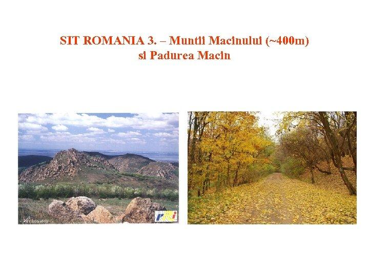 SIT ROMANIA 3. – Muntii Macinului (~400 m) si Padurea Macin
