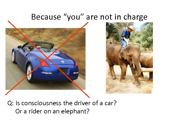 """Because """"you"""" are not in charge Q: Is consciousness the driver of a car?"""