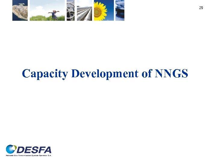 29 Capacity Development of NNGS