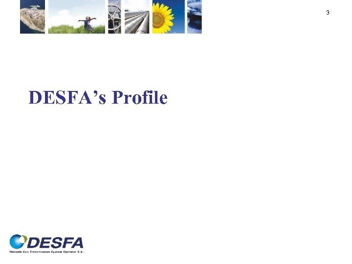 3 DESFA's Profile
