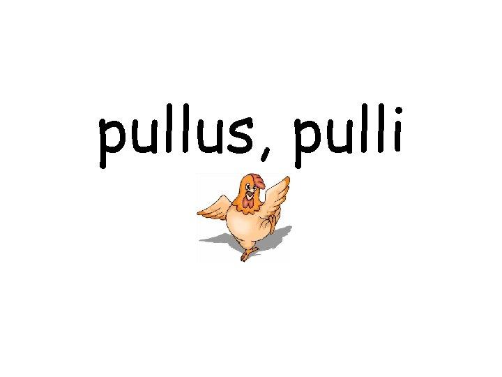 pullus, pulli