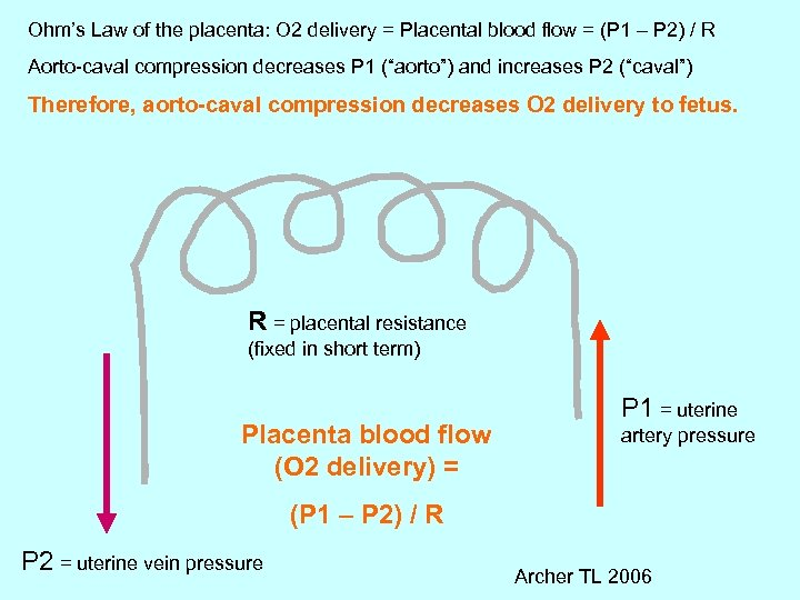 Ohm's Law of the placenta: O 2 delivery = Placental blood flow = (P