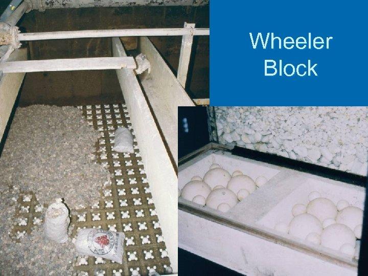 Wheeler Block
