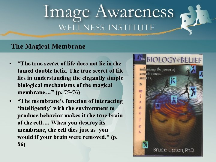 """The Magical Membrane • """"The true secret of life does not lie in the"""